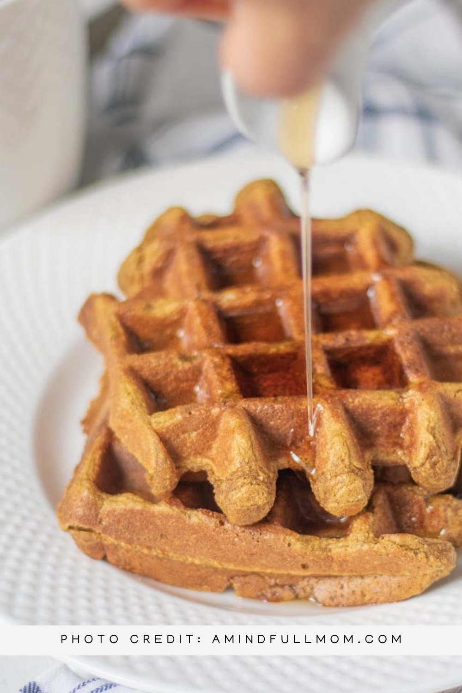 Vegan and Gluten-Free Waffle Recipes mommyrandr valerie pierre